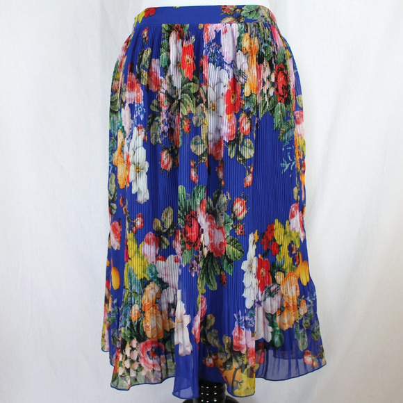 5a13d2eaa4d Skies are Blue Gwyneth Pleated Skirt Blue Floral M